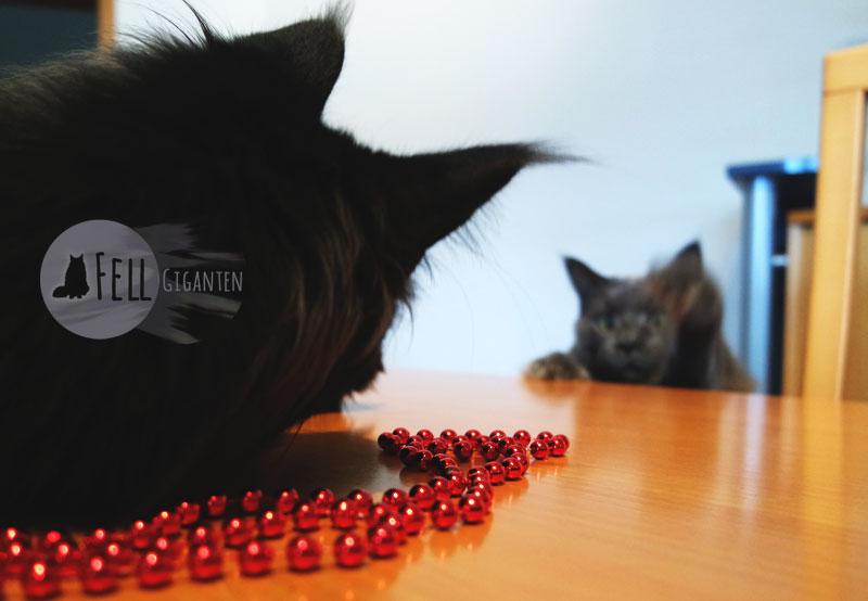Katzen mit Baumschmuck
