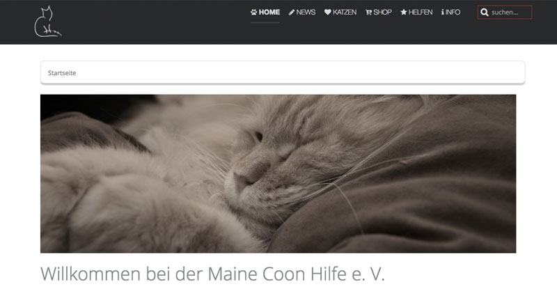 Maine Coon Hilfe