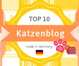 Die besten deutschsprachigen Katzenblogs 2019