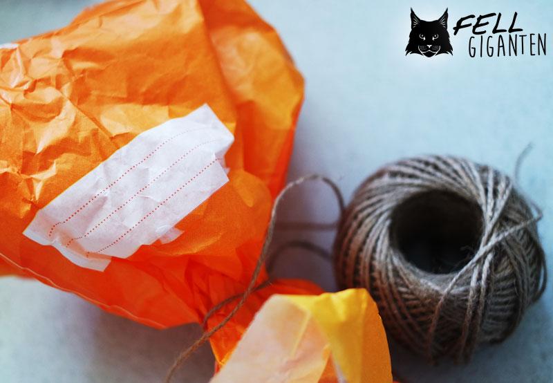 Katzen Beschäftigung mit Pinata